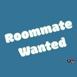 Looking for Roommate in Valley Village, CA  - Փնտրում եմ Սենյակակից