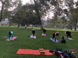 Free Yoga Class in Glendale, CA