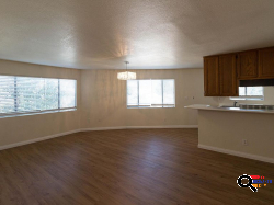 Upgraded 1bd Unit with New Paint, Blinds, Kitchen Countertops, Chandelier, and More in Glendale, CA
