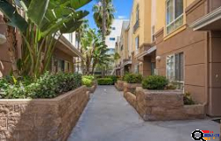 Beautiful 1 bed 1 bath Apartment for Rent in Hollywood, CA